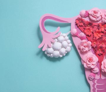 Insuficiência Ovariana Prematura: foco no tratamento hormonal. Uma posição da Comissão Nacional Especializada de Ginecologia Endócrina